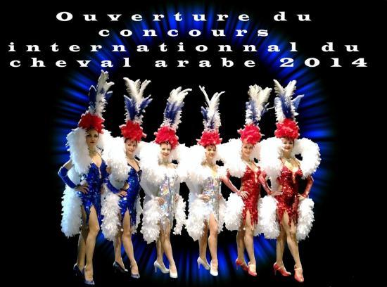 "Salon du Cheval 2014 - Plumes ""Bleu Blanc Rouge"""